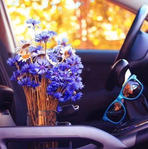 شستشوی خودرو در فصل بهار