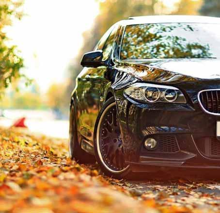 نگه داری و نظافت خودرو در فصل پاییز